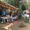 インドへ #7 Auroville滞在記 後編 Sadhana Forest