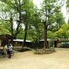 【週末奈良旅】朱塗の社殿に金色の釣灯篭が映える奈良の世界遺産『春日大社』(その二)