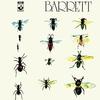 シド・バレット  プロジェクト・パート2『Barrett』