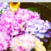 """【宮城】インスタで話題の""""花手水""""は宮城でも見られる件"""