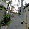 新宿十二社 熊野神社 花園神社・明治神宮  三社はそれぞれから歩いていける距離