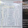 「The Measure of Man & Woman revised edition Human Factors in Design」