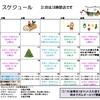 東京ベイ12月のスケジュール公開!