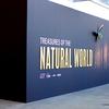 メルボルン博物館で行われている、Treasures of the Natural World展を訪れる