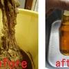【昆虫発酵調味料、ひと種類仕上げました。】