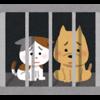憂鬱な仕事を辞めて、月額6万5千円で暮らすと、処分される犬猫を救うことことになる。
