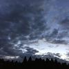 11月11日(水)曇り