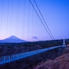 東京から日帰りでも行ける、静岡県の三島・沼津の観光地やグルメを紹介します