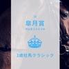皐月賞(2018年)はディープインパクト産駒向きの高速馬場か、Roberto向きの重馬場か?