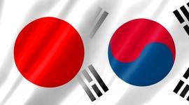 韓国製診断キット名を「独島」請願に、中国で大きな反響が