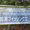 真夏の加賀フィッシングエリアで表層マイクロスプーン無限地獄にやっと遭遇^^