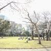 広々とした芝生が!!東京都庭園美術館は子連れに嬉しいお散歩スポット
