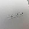 ABALLI システム手帳