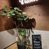 株式会社 Viibar に入社しました