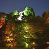 【見るだけ無料】椿山荘の庭園でホタルが良く見えるスポットはココ!