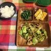 2月9日のしょーこ飯