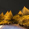 【金沢旅行】雪景色の兼六園を撮りに行ってきた