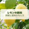 【レモン栽培】必要な肥料と与え方・時期について【柑橘類の育て方】