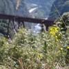 県知事選の争点−立野ダムの工事現場から
