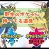 【ポケモンソード・シールド(剣盾)】野生のポケモンが持っている道具まとめ