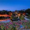 京都・二条城前 - 神泉苑の山茶花