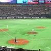面接からの野球