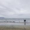 雨の鎌倉ぶらり散歩(woof curry、由比ヶ浜、sahan)