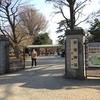 東京にも自然があった。新宿御苑はお散歩におすすめ。