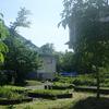 京都大学の薬用植物園。