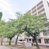 【KAISEI天王寺】パークビュー。カウンターキッチンに大型収納のついたゆったり1K 34.26平米