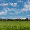 富山の富良野?:くろべ牧場まきばの風