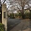 高円寺に来たら 高円寺に行ってみましょう