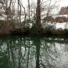 残雪の野池