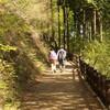 【参加者募集】神奈川のロードバイク好きたちよ、8/15に「都民の森」へ行って涼もう! 都民のみなさん、またお邪魔します。【自由参加】