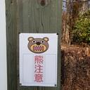 レッツ・昭和万葉の森ブログ