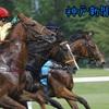 9月23日(月)「神戸新聞杯」予想☆素人が回収率100%超えることができるでしょうか!?