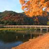 京都 紅葉100シリーズ 嵐山周辺 NO.94