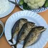 チェンマイで食べる海水魚