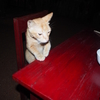 バガン観光。夕食はユン・ミョー・トゥ・ホテル隣のレストランでカレー。【2016年7月ミャンマー旅行記17】