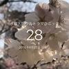 ランニングログ3/25 お花見マラニック大阪城 水都大阪ウルトラマラニックまであと:28日