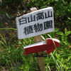 続白山高山植物園「お花畑」(その2)