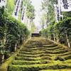 鎌倉へ🎒🚃