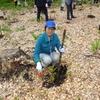 かがやいて水・空・緑のハーモニー 第68回全国植樹祭