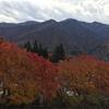 紅葉の妙法ヶ岳(三峯神社奥宮)
