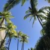 ハワイ好きにはたまらない!テレビ番組💞「ハワイ新発見~楽園の島々をたずねて~」🏝✨