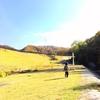 紅葉 〜ほしだ園地〜