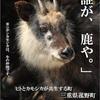 シカとカモシカ Deer vs Japanese serow