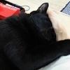 ◆手まくら寝
