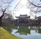 【関西・京都】平等院鳳凰堂の阿弥陀堂と庭園☆厳かな美しさ
