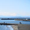 「江の島」慕情…そして…哀歌